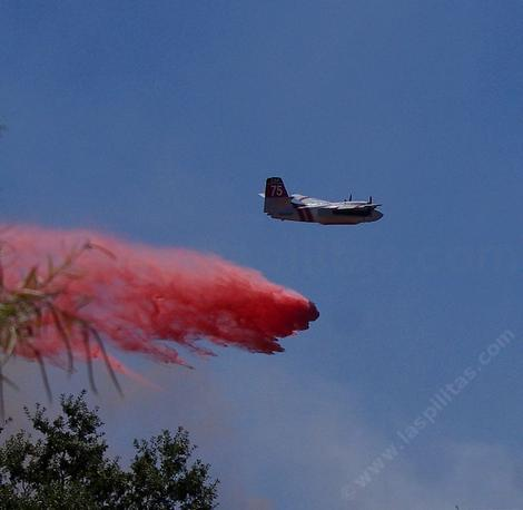 A bomber dropping fire retardant across the street from the nursery. - grid24_12