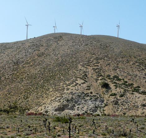 The wind turbines out by Mojave. Notice the turbines are on the ridges not the valley. - grid24_12