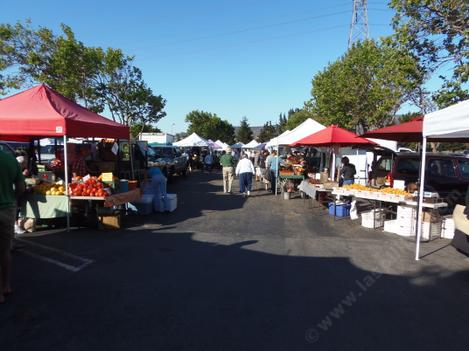 Farmers Market in San Luis Obispo has about 200 vendors from Solvang to Stockton - grid24_12