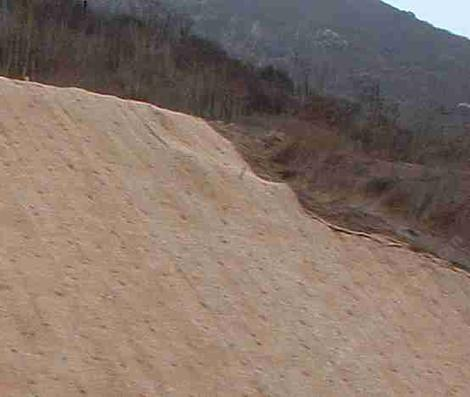 Simple Erosion Control For A Hillside Or Garden Slope
