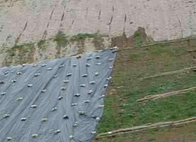 How To Landscape A Hillside Slope To Stabilize And Control Erosion