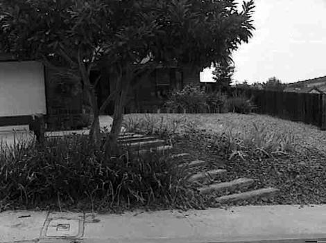 a before garden  photo on a Rubin job in 1998. Probably Poway in Southern California. - grid24_12