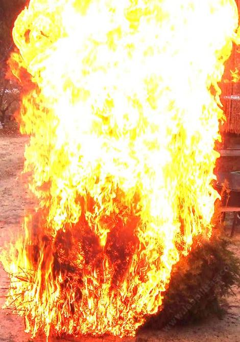 Light the Christmas Tree. People are terrified of 'brush' but they put highly flammable things in or around their house. - grid24_12