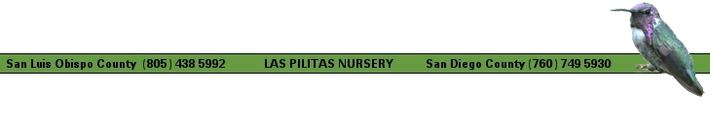 Las Pilitas: San Luis Obispo and San Diego Counties