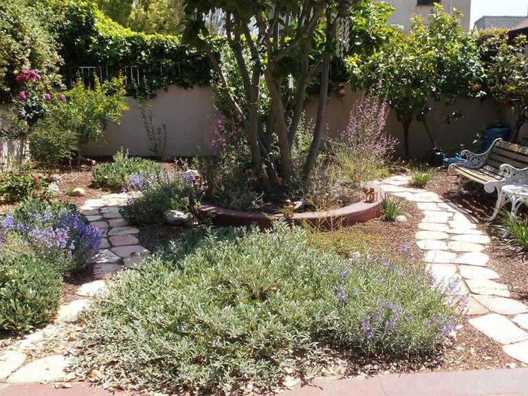 A Los Angeles Native Garden After 12 Months.   Grid24_12