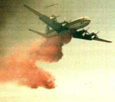 a fire bomber dropping fire retardant  - grid24_6