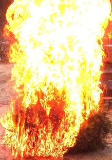 Light the Christmas Tree. People are terrified of 'brush' but they put highly flammable things in or around their house. - grid24_6